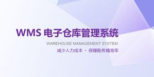 WMS系统介绍文档下载